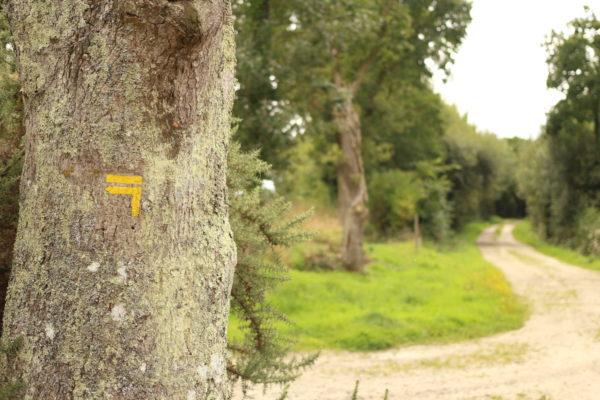 circuit gr randonnée